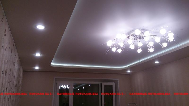 фото двухуровневый натяжной потолок в зале