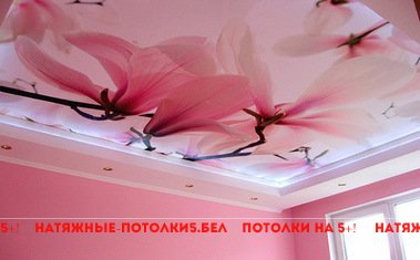 натяжной потолок в спальню с фотопечатью